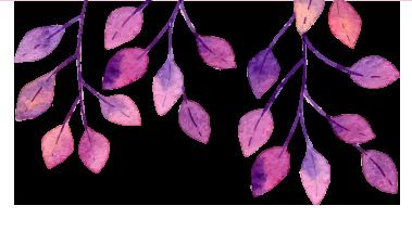 Blätter oben